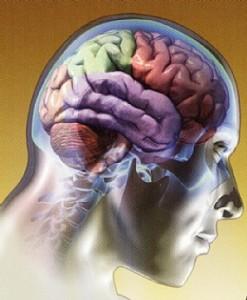 O que é Fisiologia?