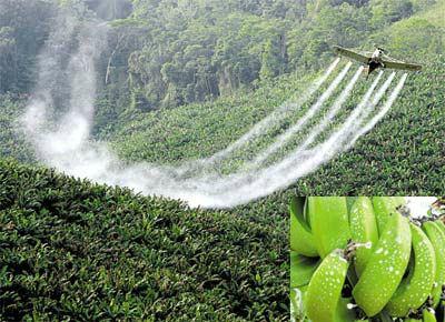 O que são Fertilizantes?
