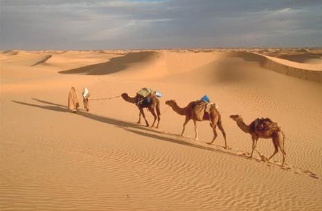 O que é Deserto?