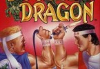o-que-e-double-dragon-1
